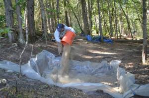 Mariah helping to backfill Housepit 8 Photo Credit: Allisa