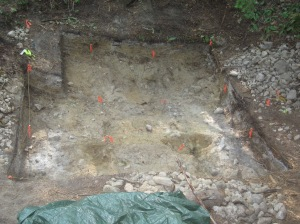 Housepit 7 with excavation complete.